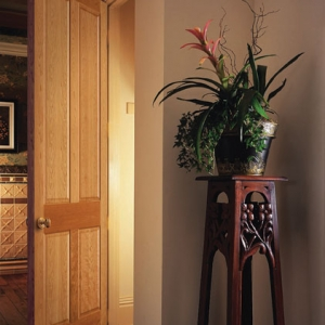 Clearview Interior Doors (2)